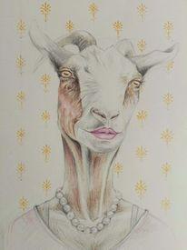 Zeichnung, Frau, Gesicht, Ziegen