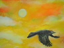 Fliegen, Krähe, Himmel, Orange