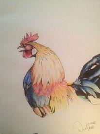 Buntstifte, Zeichnung, Hahn, Zeichnungen