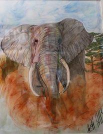 Tiere, Afrika, Braun, Zeichnungen
