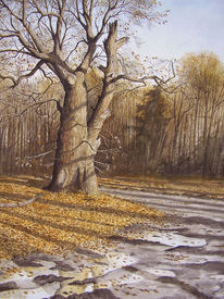 Aquarellmalerei, Baum, Licht, Winter