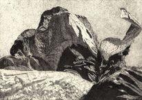 Mohnscheinsonate, Pflanzen, Zeichnung, Sonate