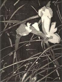 Frühling, Blätter, Druckgrafik, Grau