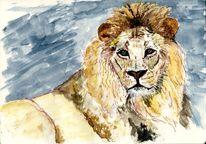 Lebewesen, Löwe, Natur, Tiere