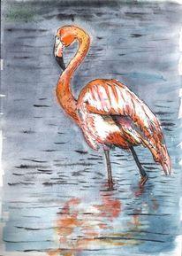 Flamingo, Feder, Vogel, Flügel