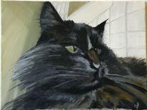 Ölmalerei katze öl, Malerei