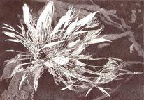 Kornblumen, Garten, Blumen, Feldweg