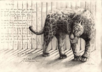 Tierportrait, Mystik, Katze, Leopard