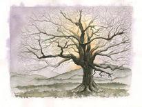 Abendhimmel, Aquarellierte tuschzeichnung, Winterabend, Winterbaum