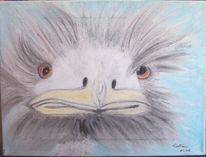 Vogel strauß, Pastellmalerei, Tiere, Kreide