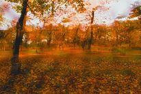 Fotokubismus, Herbst, Fotografie, 2013
