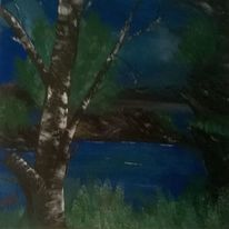 Birken, Grün, Wald, Baum
