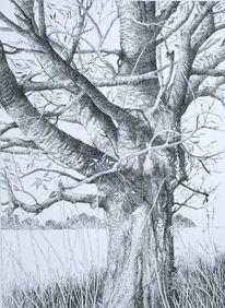 Landschaft, Zeichnungen, Tuschezeichnungen