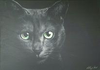 Katzenaugen, Grün, Katze, Schwarz