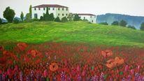 Mohn, Klee, Toskana, Malerei