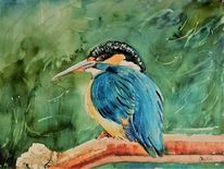 Eisvogel, Tiere, Natur, Aquarell