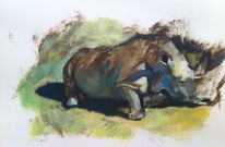 Nashorn, Farben, Formen, Malerei