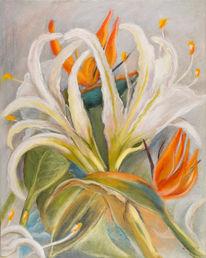 Blumen, Exotische, Blüte, Malerei
