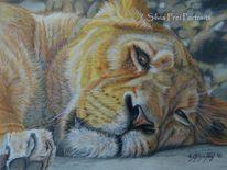 Katze, Zeichnung, Tierportrait, Löwin