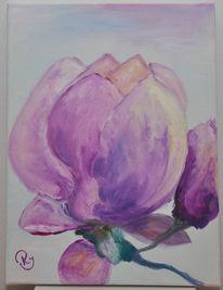 Blau, Magnolien, Malerei, Ölmalerei