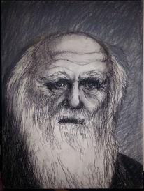 Persönlichkeit, Schwarz, Darwin, Evolution