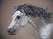 Pferde, Welsh cob, Malerei