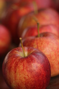 Gesund, Vegetarismus, Lecker äpfel, Obst