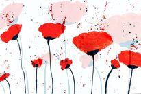 Regen, Abstrakt, Mohnblumen, Rot
