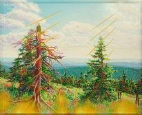 Weite, Harz, Naturmalerei, Malerei