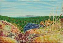 Newage, Gras, Licht, Landschaft