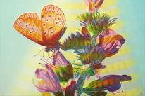 Sommer, Blumen, Natur, Bunt
