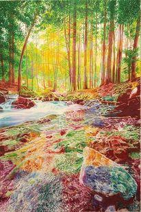 Wasser, Felsen, Blätter, Harz