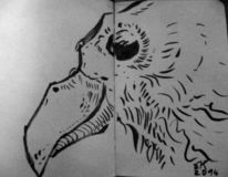 Moleskine, Skizzenbuch, Vogel, Zeichnung