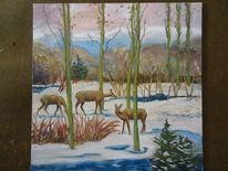 Wild, Wald, Schnee, Baum
