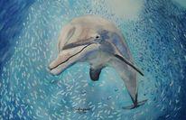 Meer, Fischschwarm, Blau, Delfin