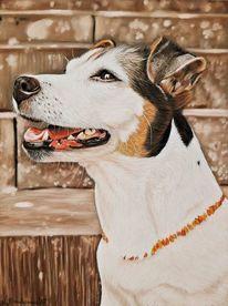 Hund, Russel, Pastellmalerei, Tiere