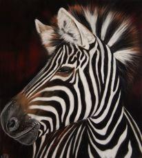 Wildnis, Pastellmalerei, Zebra, Wildtier