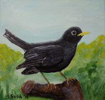 Vogel, Tiere, Natur, Amsel