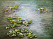 Seerosen, Teich, Wasser, Blüte