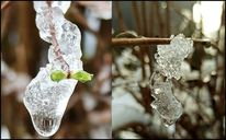 Eis, Fotografie, Frühling