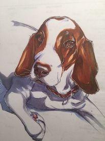 Hund, Haustier, Copic, Zeichnungen
