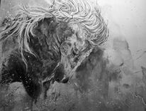 Pferde, Wild, Schwarzweiß, Malerei