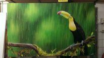 Tukan, Regen, Graffiti, Tiere