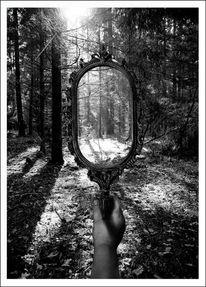Licht, Digitalartwork, Druck, Wald
