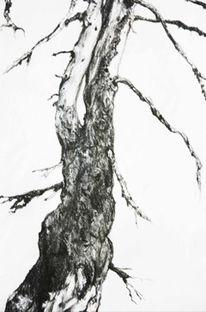 Natur, Zeichnung, Landschaft, Schwarz weiß