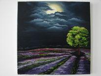Wolken, Lavendel, Licht, Nacht