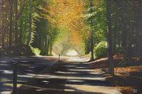 Orange, Weg, Landschaft, Wald