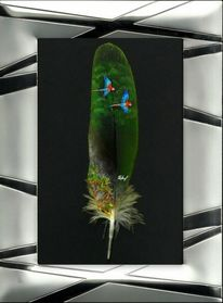 Feder, Regenwald, Pastellmalerei, Rodung