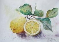 Aquarellmalerei, Zitrone, Stillleben, Aquarell