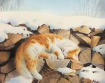 Kater, Katze, Schnee, Frühling